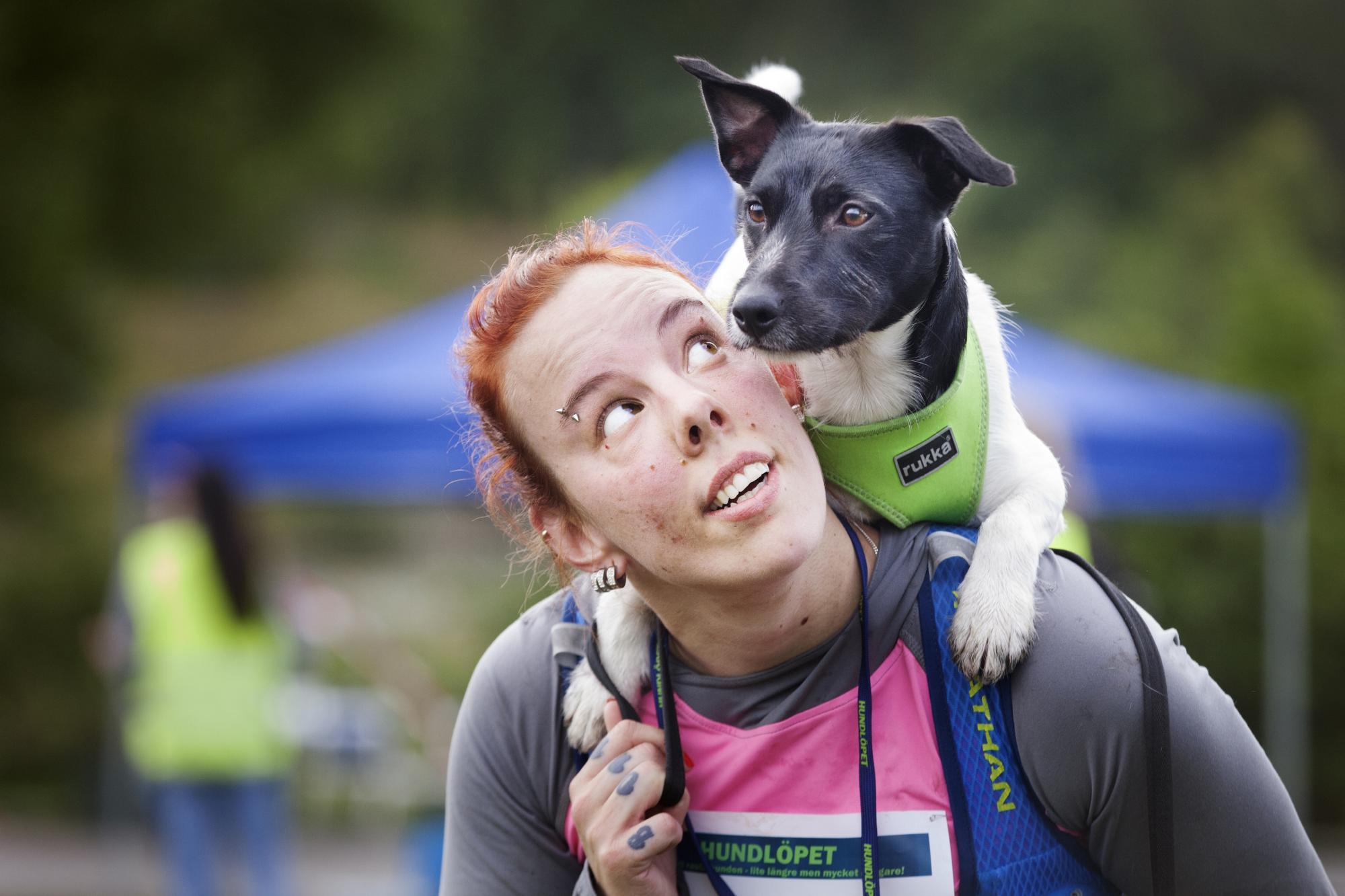 Jack Russelhannen Lucky sprang för första gången5 kilometer under en timmemed matte Jessica<span>Cahling.</span>