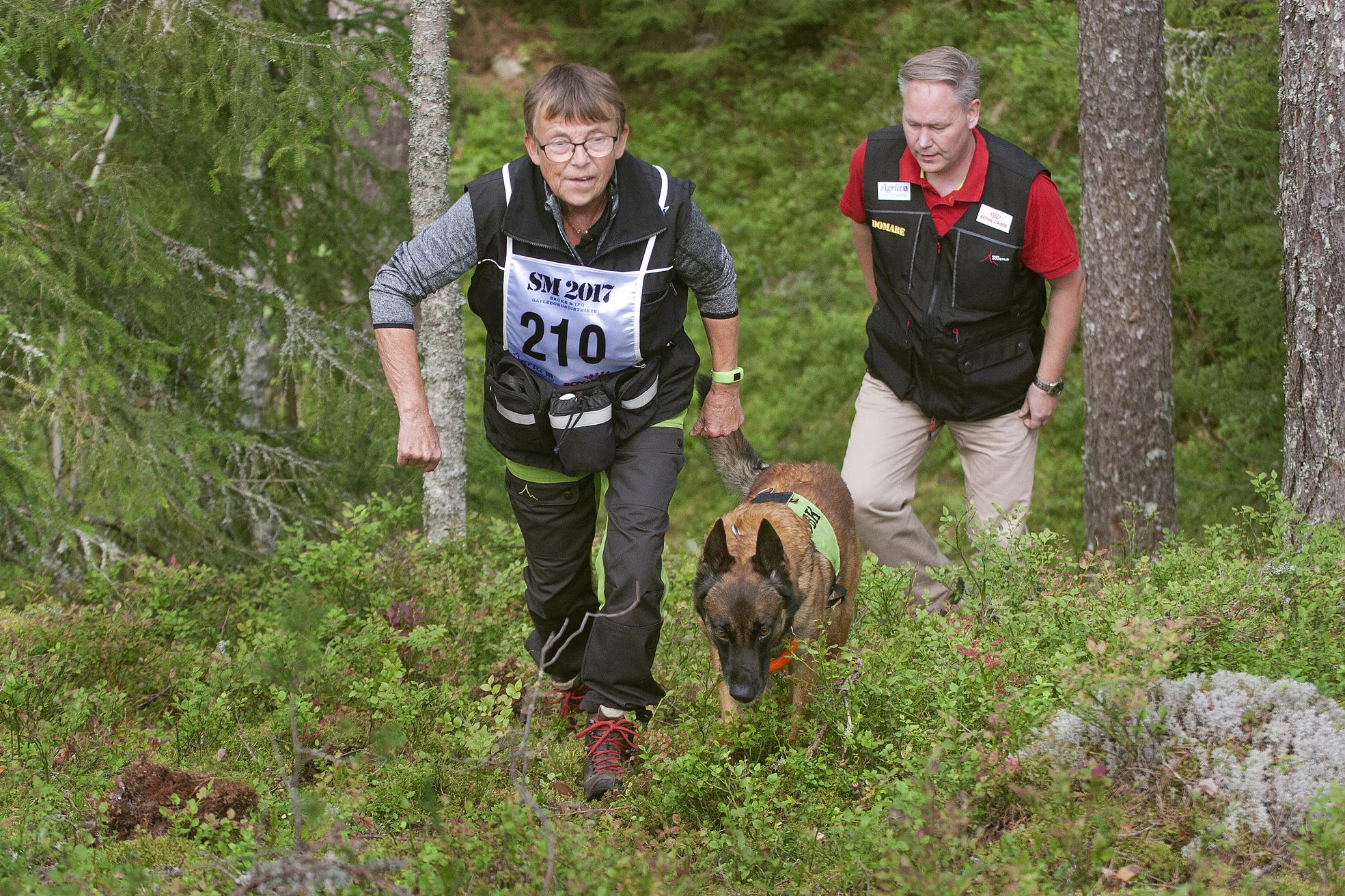Marianne Nilson och Lei-Anns Doris har precis hittat en figurant och är på väg tillbaka till stigen. Efter dem följer domare Tomas Karlsson.