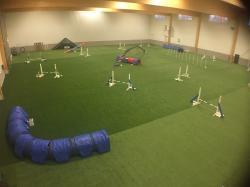 Hundskolorna Greenroom