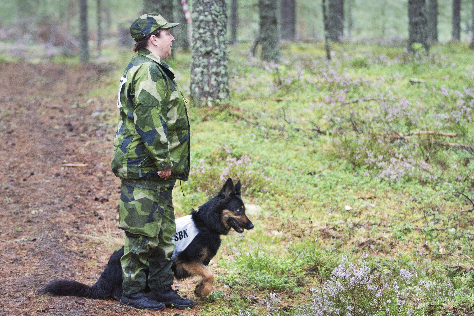 Eva Söderlund skickar här ut Ester på det första slaget i uppletandemomentet. SM-general Ola Eriksson berättade att momentet är till för att hunden skall visa att \