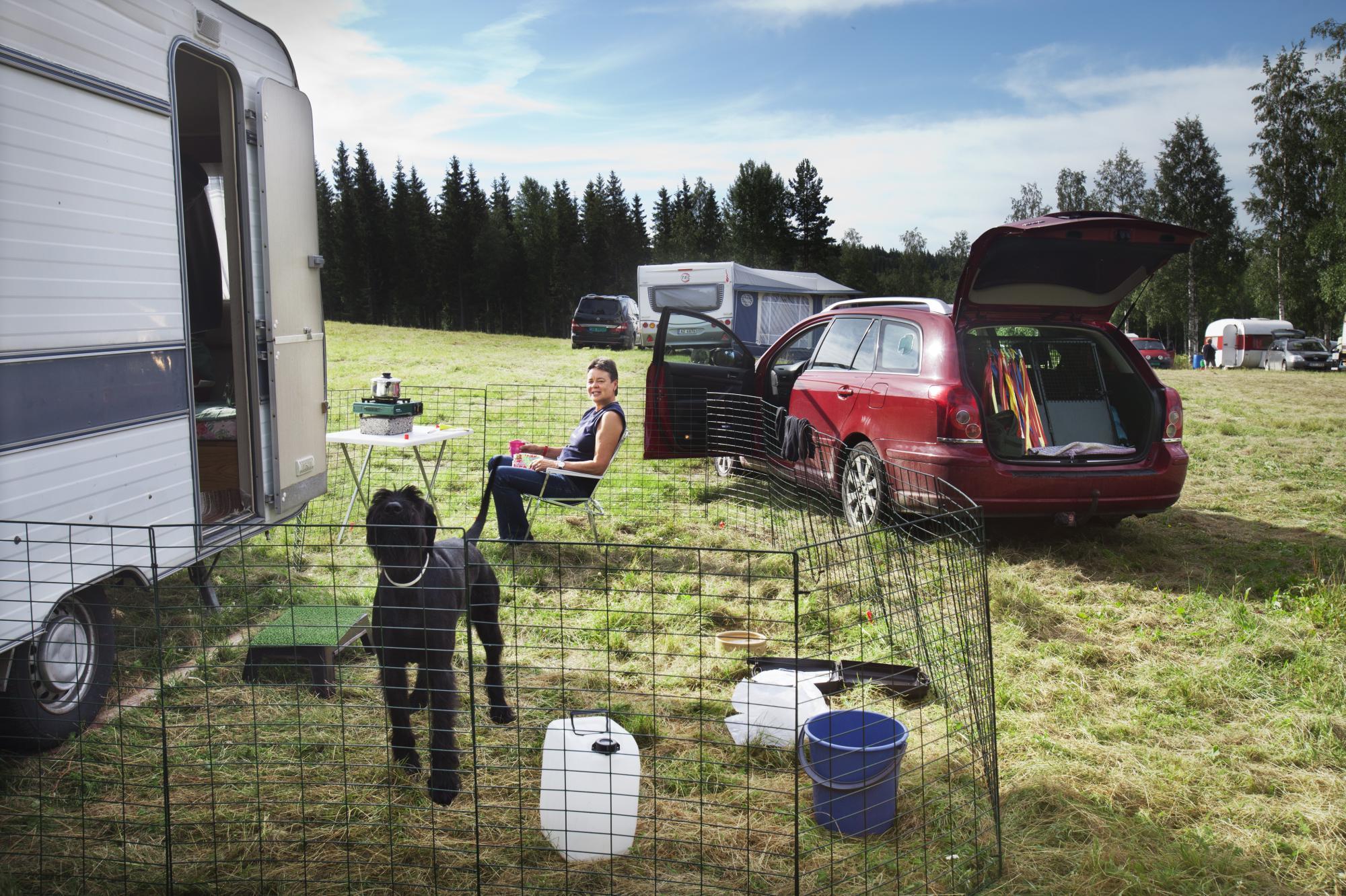 Inger Jönsson tar en vilopaus utanför husvagnen. Inger har en resväg på nio timmar då hon kör från sitt hem i Blentarp utanför Lund till Kopparbolägret, men tycker det är värt resan. Hon och hennes hund Bribories Hippi, som kallas för Tekla, tar tidiga kvällar då de fokuserar på att träna mycket under lägret.