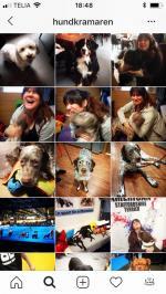 2014 startade Miasitt instagram-konto \