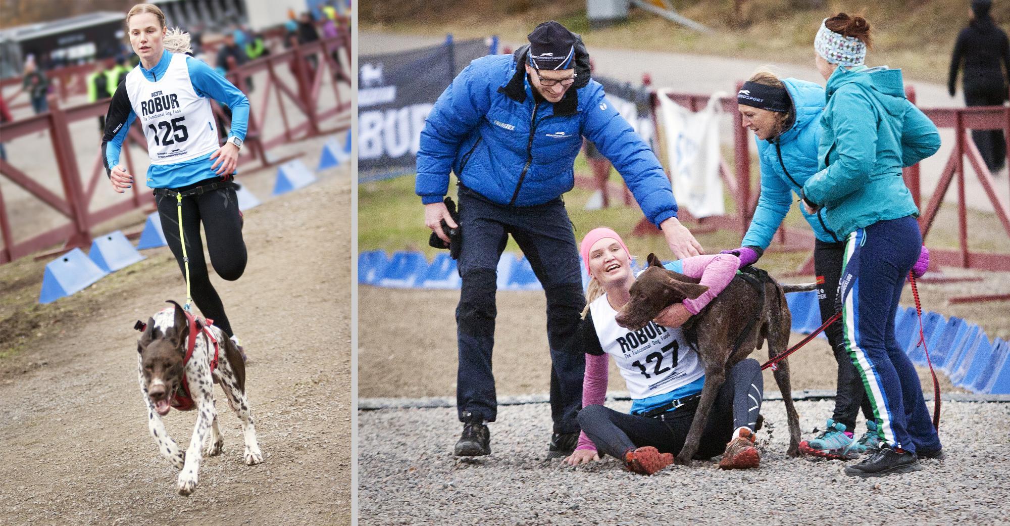 Systrarna Sanna och Emmy Näslund tog hem guld och silver i linlöpning med sina A-hundar som räknas som de snabbaste hundarna.