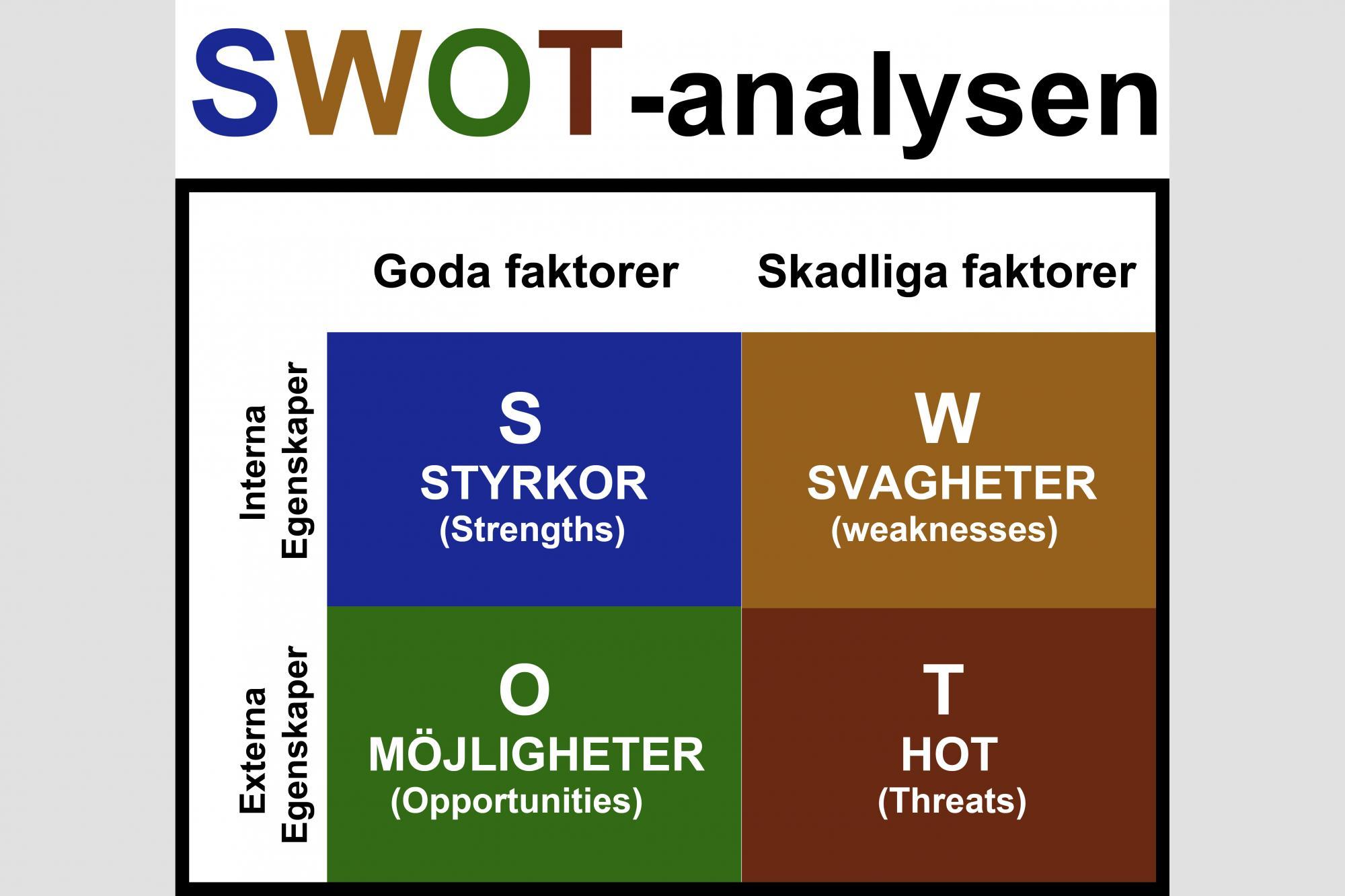 Grafik: Sara Flodin<br />Carin Bengtsson använder sig av SWOT-analysen när hon utvärderar sin hundträning.