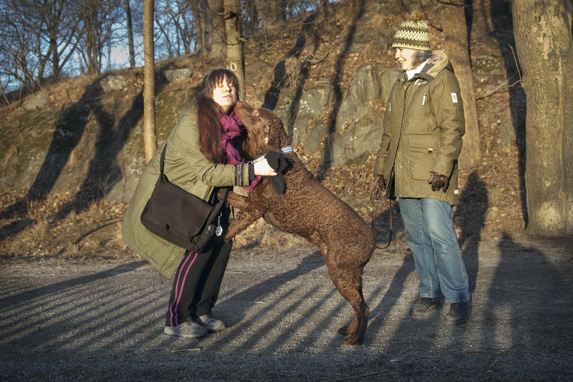 Hundkramaren Mia Wallerud får en puss av Curly coated retrievern Bruno.