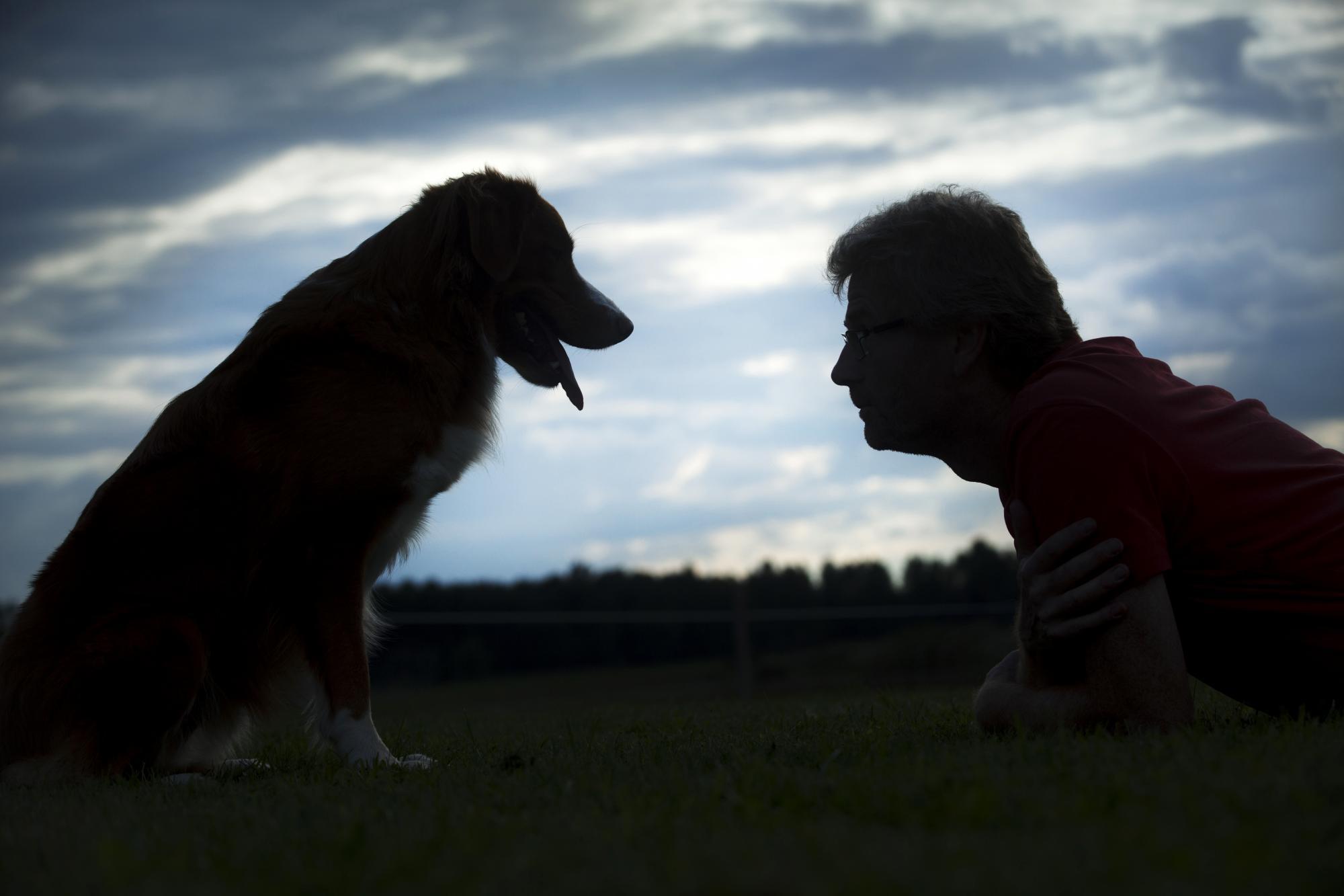 Kenth är författare till flera hundbäcker, bland andra, Bra relation, Om samspelet mellan hund och människa med TBS-modellen.