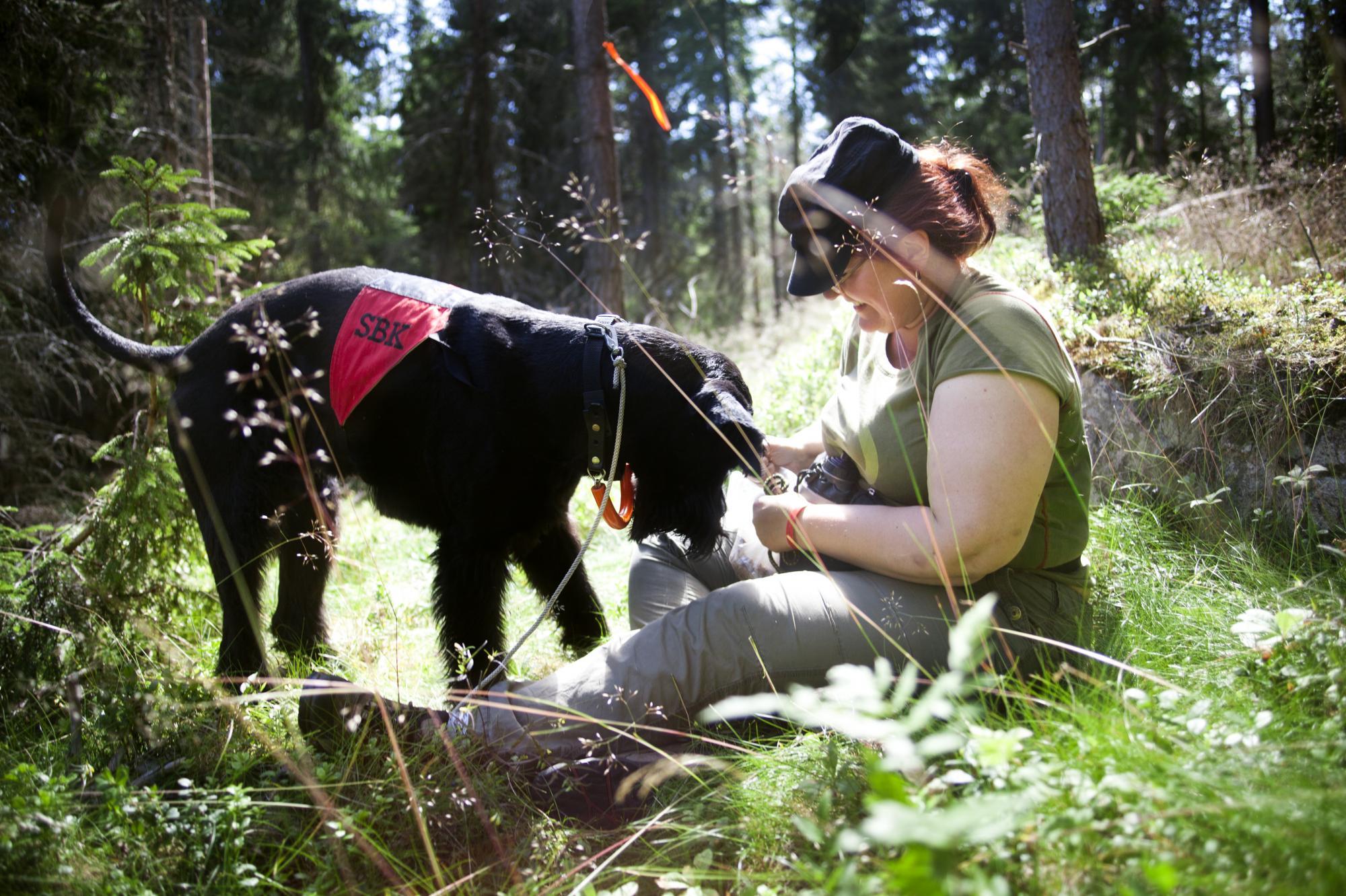 """Anette Nordahl som gömt sig i sökskogen belönar riesenhannen """"Viggo"""", Up Shots Viggo, när han hittat henne."""
