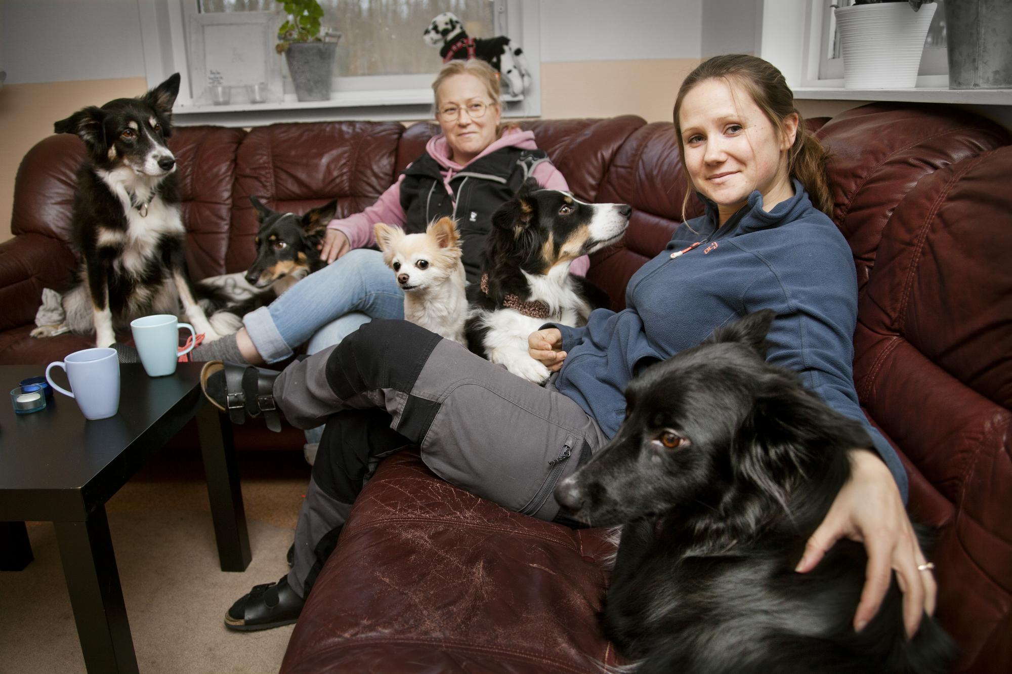 Lotta Nilsdotter driverLerkulans Hundcenter i Skinnskatteberg därIsabelle arbetar.