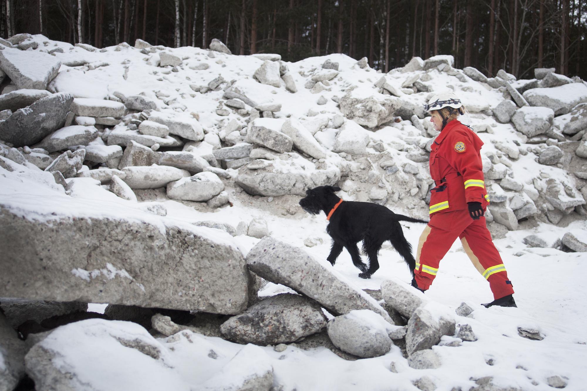 Mia har tränat upp två räddningshundar, Hugo och Putte, som båda kommer från Bardlands kennel.