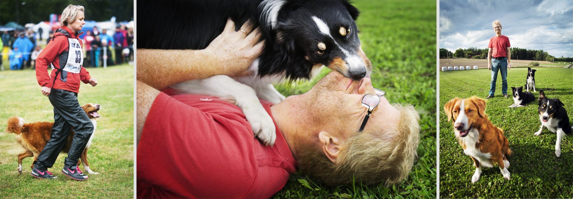 <span>Kenth och Niina Svartberg är instruktörer/coacher och driver kursverksamhet. Både Kenth och Nina</span><span>har bland annat tävlat för lydnadlandslaget med flera hundar, men också bruks, agility (Kenth), Heelwork to Music (Niina) och vallning (Kenth). Kenth är etolog och forskar i hundens beteende medan Niina har djuplodat i mental träning och tävlingspyskologi. <br />De är författare till ett flertal hundböcker. Den som vill läsa mer om Kenth kan klicka på bilden.<br /></span>