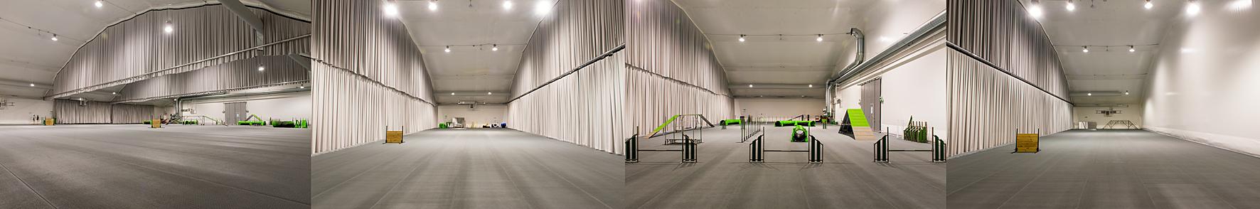 <span>Stockholms Hundsportcentrum, </span>fr.v.hela hallen öppen,Snobben,Fähunden & Pluto.