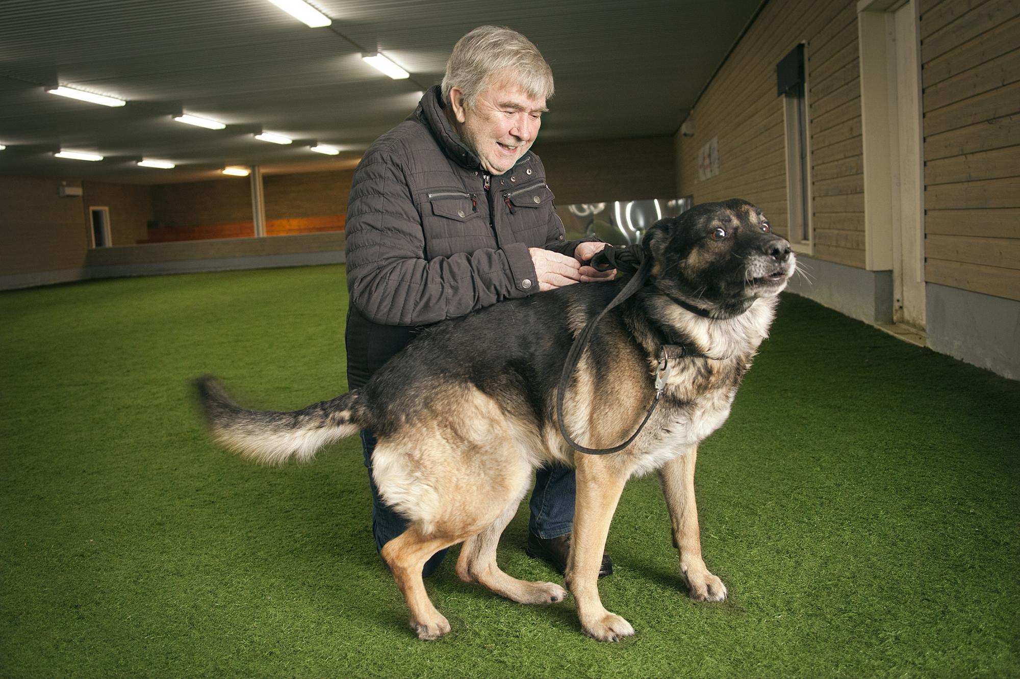 Ingemar Elfström kom på idén att Fagersta Brukshundklubb skulle bygga en egen hundträningshall. Ingermar tillsammans med sin Schäferhanne Liston, \