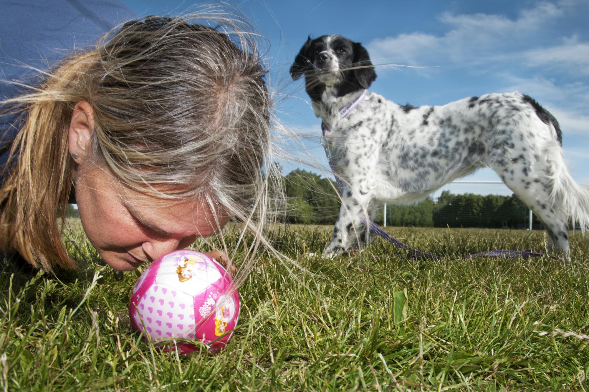 Hundinstruktör Linda Bodin fick under sommaren berätta om inlärningsformen \