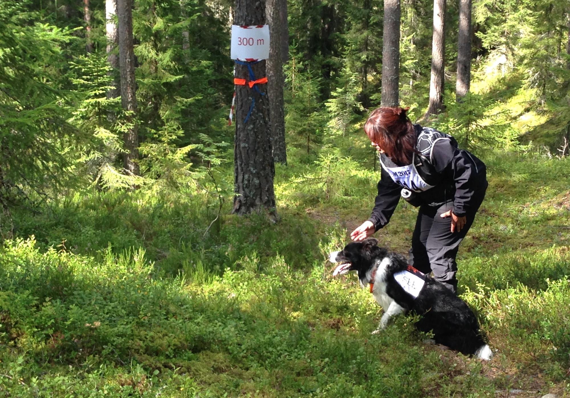 Susanne Rydberg fick in alla figuranter och domarna gav ekipaget betyg 8/8.