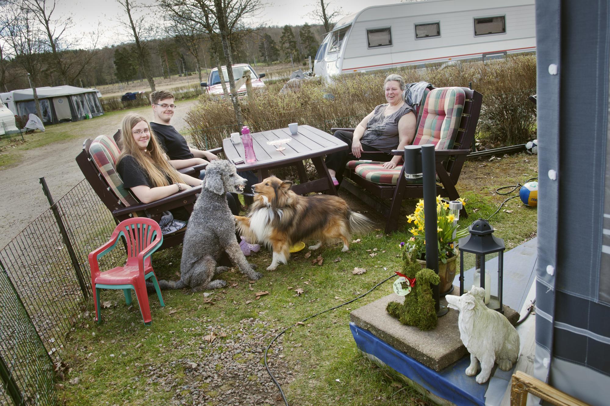 Christina Karlberg samt syskonen Robert ochRebeccaAlveljung är fast boende på campingen tillsammans med pudeltikenRonja och Sheltiehannen Sigge.