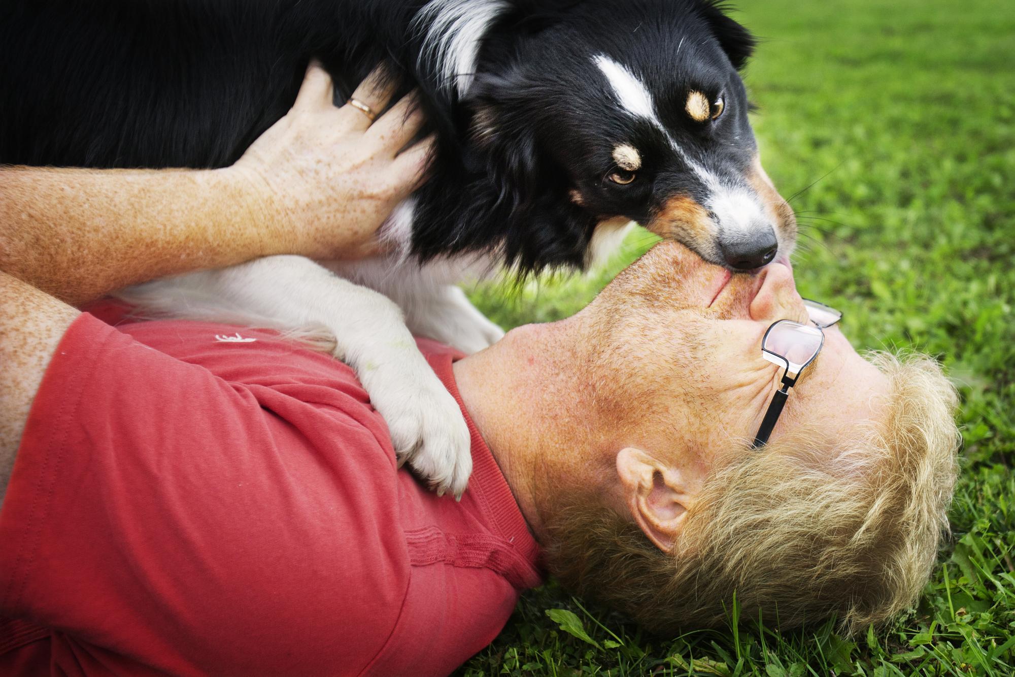 Etolog Kenth Svartberg har medverkat i ett par reportage under året. <br />Klicka på bilden för att komma till ett reportaget där Kenth intervjuas om hundars personlighet.