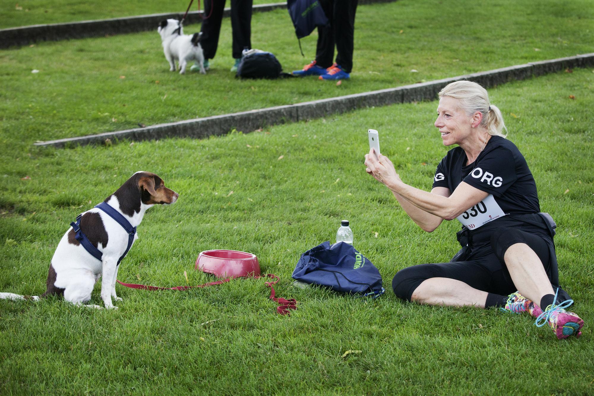 <span>Självklart ska hundens bragd förevigas. CatherineWaller tar kort på sin Dansk Svenska gårdshund Sixten för att publicera på sociala medier.</span>