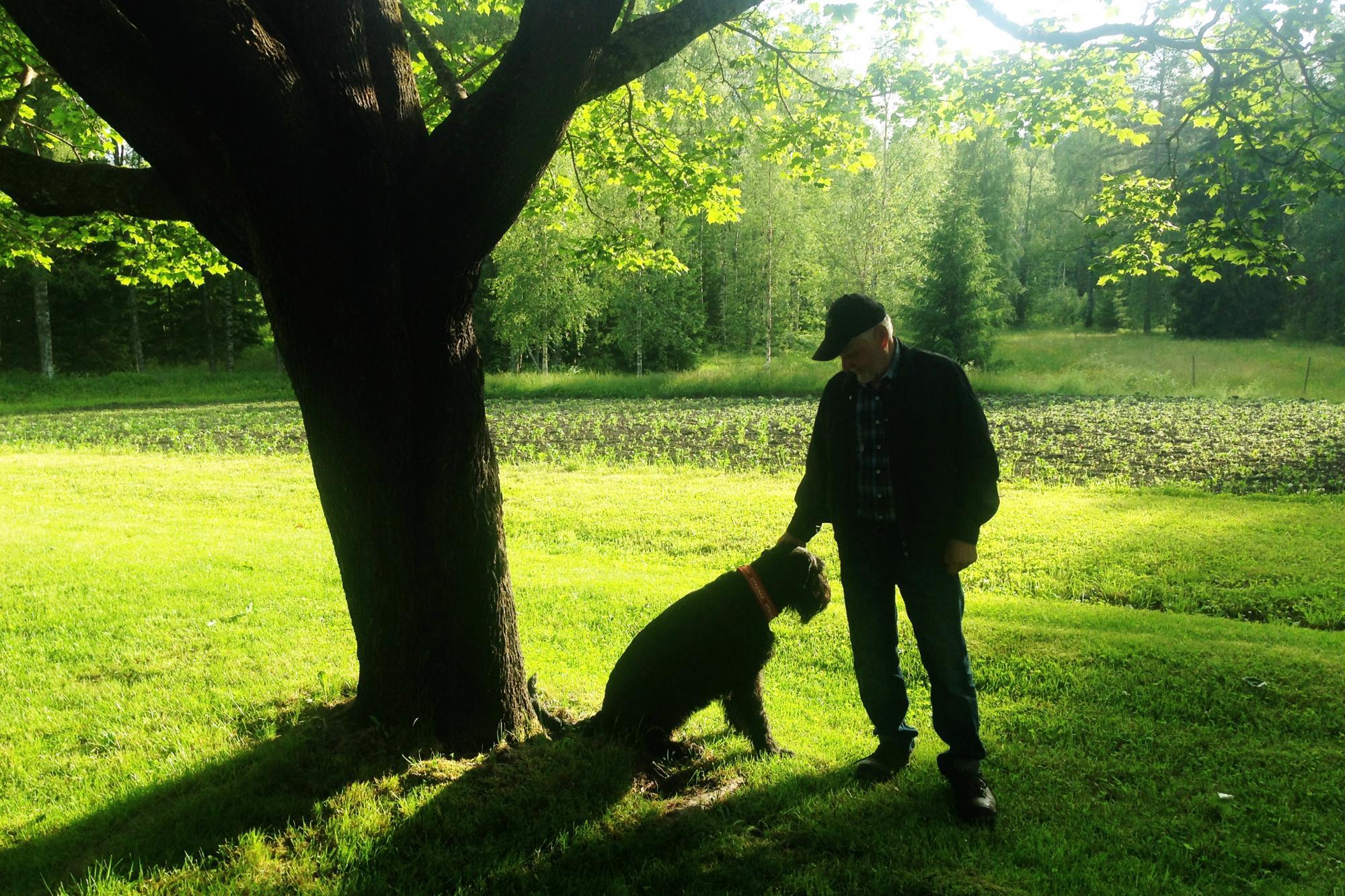 Om din hund förföljer vilt eller lantbruksdjur kan den i värsta fall avlivas av jakträttsinnehavaren, polis eller länsstyrelsen.