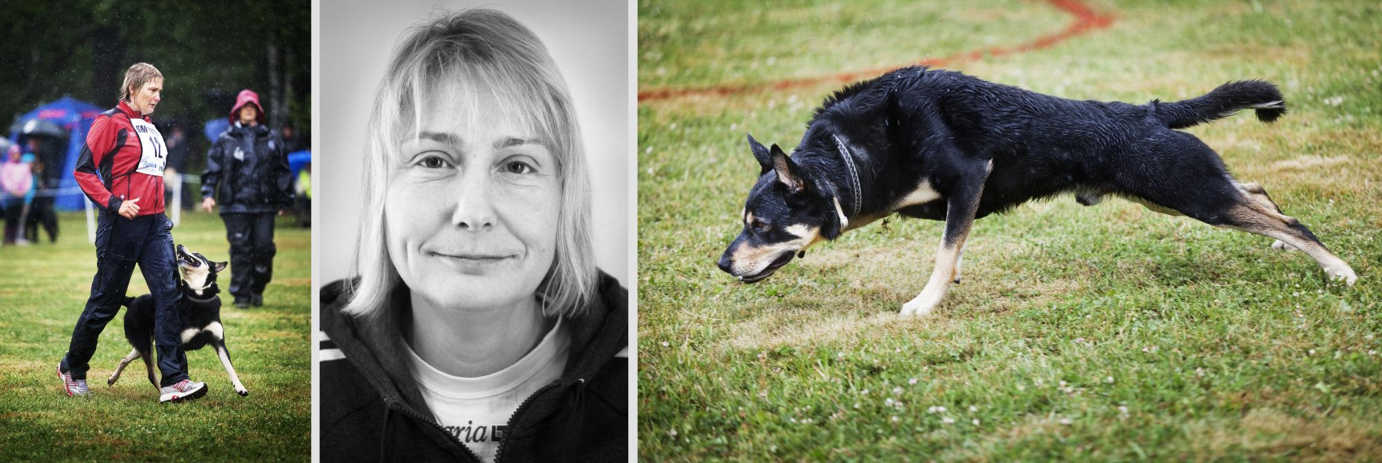 Maria Brandel har vunnit SM i lydnad tre år i rad, ingår i lydnadslandslaget och jobbar som hundinstruktör. Maria har även deltagit på Bruks SM och vunnit VM i räddning. Den som vill läsa mer om Maria kan klicka på bilden.