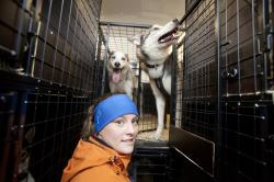 Malin Granqvist visar runt i sin skåpbil där hon får plats med tio draghundar.